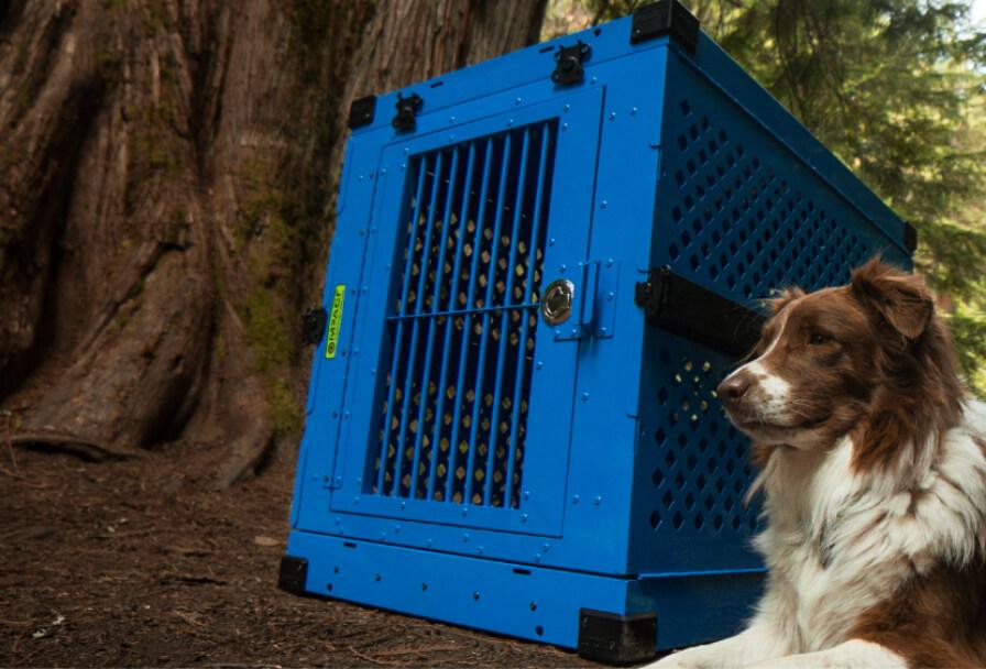 Impact Dog Crates | Strong & Safe Aluminum Dog Crates